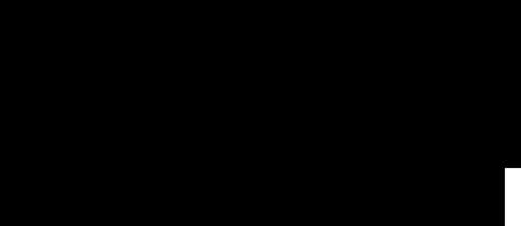 RAAWP Logo